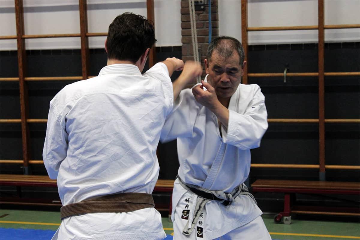 Sakagami Kihon Kumite 1